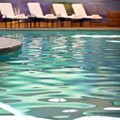 Swimming pool at Renaissance Dallas Richardson
