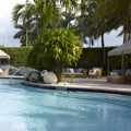Swimming pool at Renaissance Fort Lauderdale Cruise Port Hotel