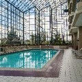 Swimming pool at Renaissance Philadelphia Airport Hotel
