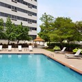 Pool image of Renaissance Woodbridge Hotel