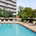 Swimming pool at Renaissance Woodbridge Hotel