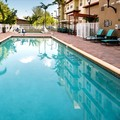Swimming pool at Residence Inn by Marriott Miami West / Fla Turnpik