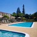 Swimming pool at Residence Inn by Marriott Palo Alto Los Altos