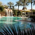 Pool image of Sheraton Desert Oasis