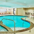 Swimming pool at Sheraton Fort Worth Hotel & Spa
