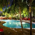 Pool image of Sheraton Suites Ft. Lauderdale at Cypress Creek