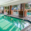 Pool image of Sheraton Suites Market Center Dallas