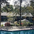 Photo of Shilo Inn Beaverton Hotel Pool