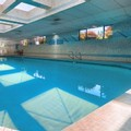 Pool image of Shilo Inn & Suites Portland Airport