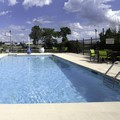 Swimming pool at Springhill Suites / North Forest Park