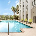 Pool image of Springhill Suites by Marriott West Palm Beach