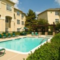 Pool image of Staybridge Addison