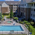 Pool image of Staybridge Suites Denver Cherry Creek