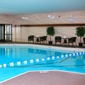 Pool image of Staybridge Suites Syracuse / Liverpool