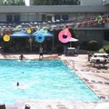 Photo of Trade Winds Central Inn Pool