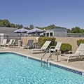 Pool image of Travelodge Clearlake