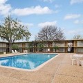 Pool image of University Inn College Station