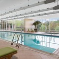 Swimming pool at Westin Bwi