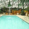 Pool image of Wildwood Inn