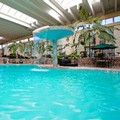 Pool image of Wyndham Garden Fresno Airport