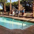 Pool image of Wyndham Garden Mount Pleasant