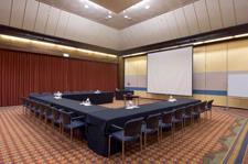Aparima Room Meeting Space Thumbnail 2
