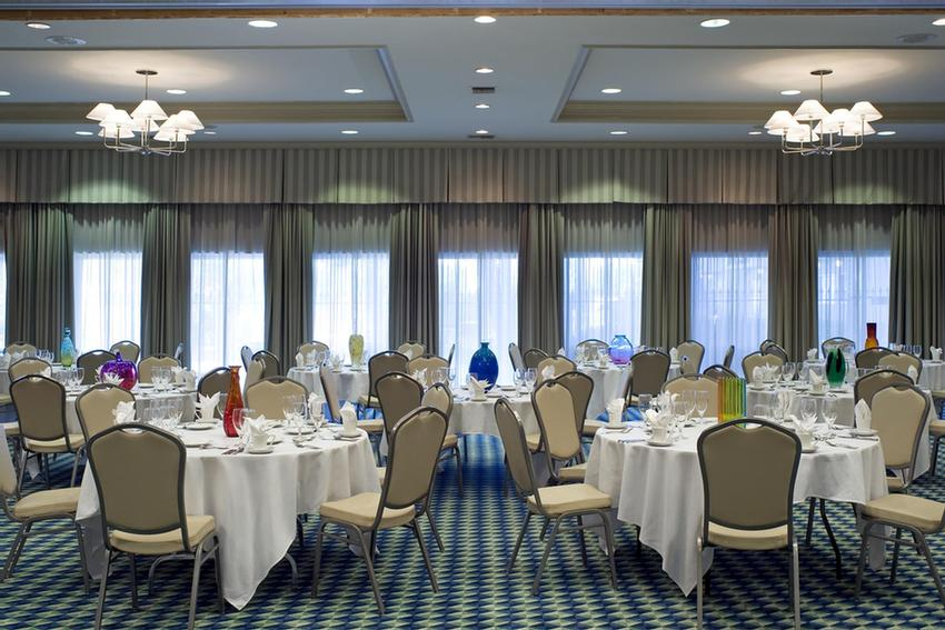 treme ballroom meeting space thumbnail 2 - Wyndham Garden New Orleans Airport