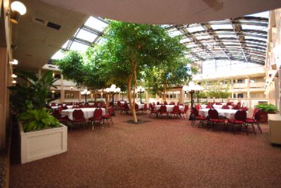 Photo of Poolside Atrium
