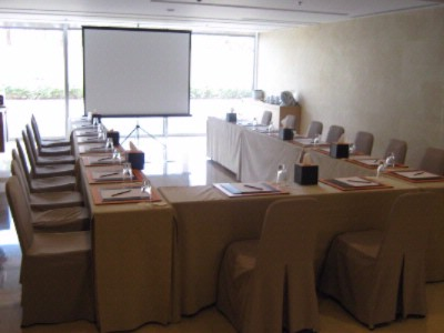 Photo of Ayla Meeting Room