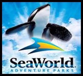 Seaworld 3 Miles 14 of 16