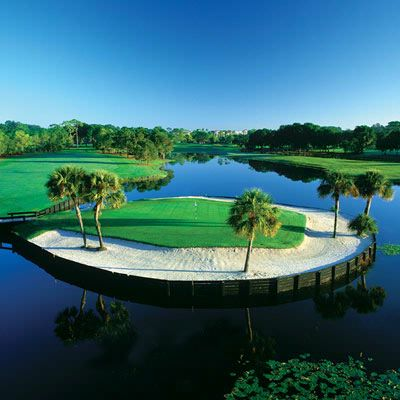 El Campeon\'s Signature Island Green #16 8 of 31