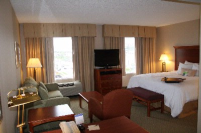 King Suite With Pullout Couch Fridge And Microwave 3 of 14