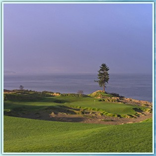 Chambers Bay Golf -A Pure Links Course 8 of 11