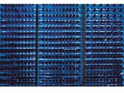 Wine Cellar With More Than 4000 Bottles 9 of 29