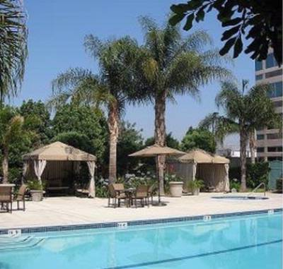 Relax At Our Pool Side With Private Cabanas 4 of 9