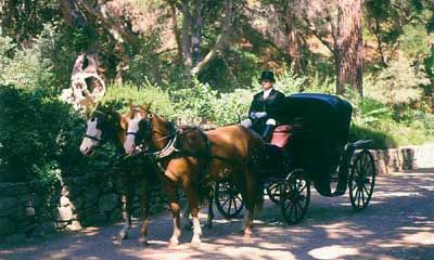 Wedding Carriage 3 of 6