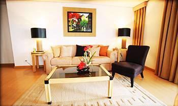 Suite Room Living Area 4 of 11