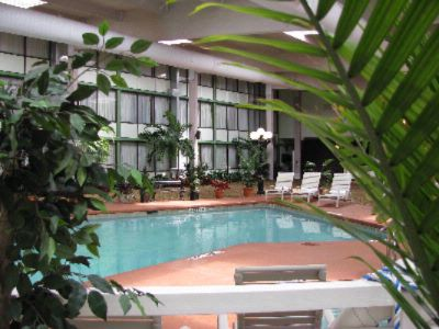 Indoor Heated Pool With Relaxing Atrium For Meetings Or Relaxing 11 of 28