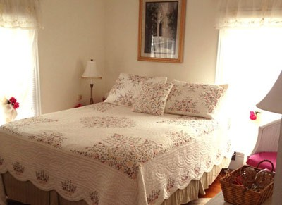 18 Vine & Carriage House -Bed And Breakfast In Hammondsport Ny. The Champagne Suite 4 of 16