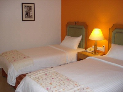 Deluxe Room (Twin Bedded) 7 of 10