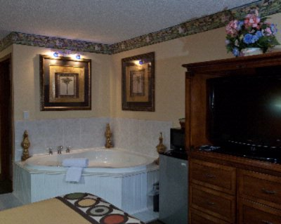 Jacuzzi Suite 11 of 14