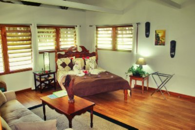 Howler Monkey Room (Inside Duplex Casita) 7 of 31