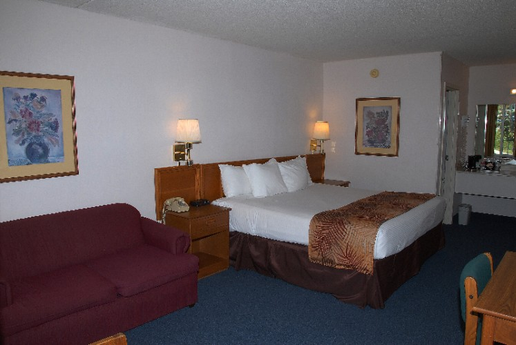 King Room With Hide A Bed 23 of 26