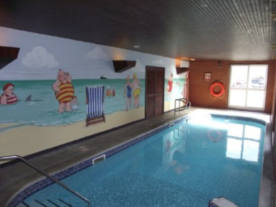 Heated Indoor Swimming Pool 18 of 31