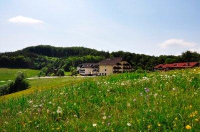 Hotel Wienerwaldhof Tullnerbach Strohzogl 67 Irenental 3011