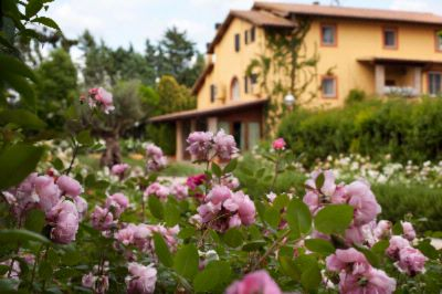 Garden Resort & Spa San Crispino 1 of 9