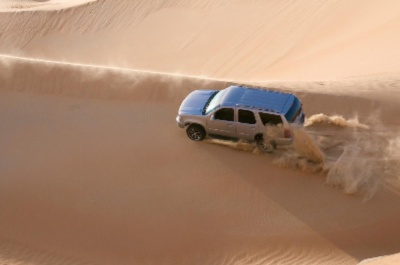 Desert Safari 90 Mins Excursions For Groups Can Be Arranged 15 of 16