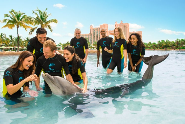 Dolphin Cay 16 of 16
