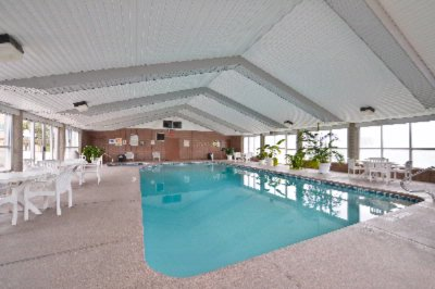 Large Indoor Swimming Pool 10 of 16