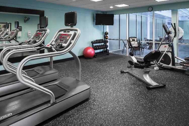 Holiday Inn Rock Island -Quad Cities -Fitness Center 7 of 23